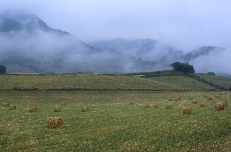 Paysage et agriculture en vallée d'Aspe - © Caumes Philippe